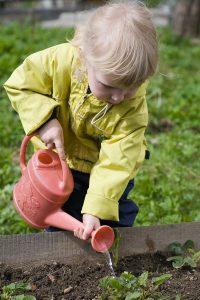 باغبانی کردن