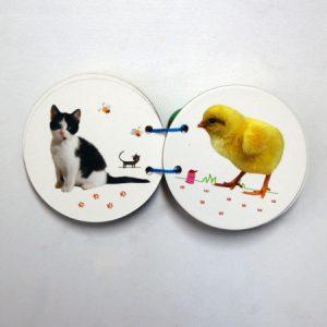 کتاب مقوایی حیوانات